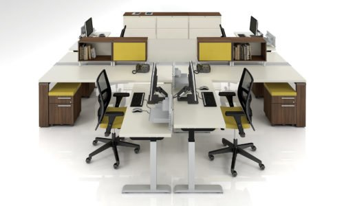 Ergonomic Workstations