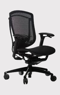 Teknion Contesa Chairs